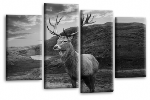 Highland Stag Wall Art Deer Scottish Black Grey Canvas Picture Print